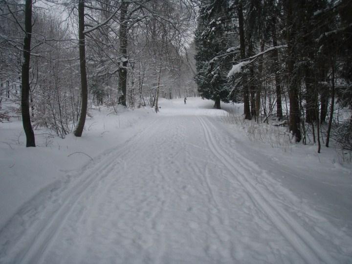 Langrendskonkurrence 27 december 2010 i Jonstrup Vang